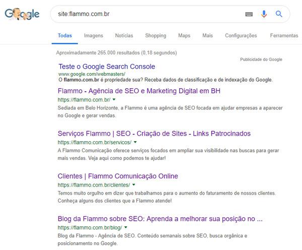 Site indexado - exemplo